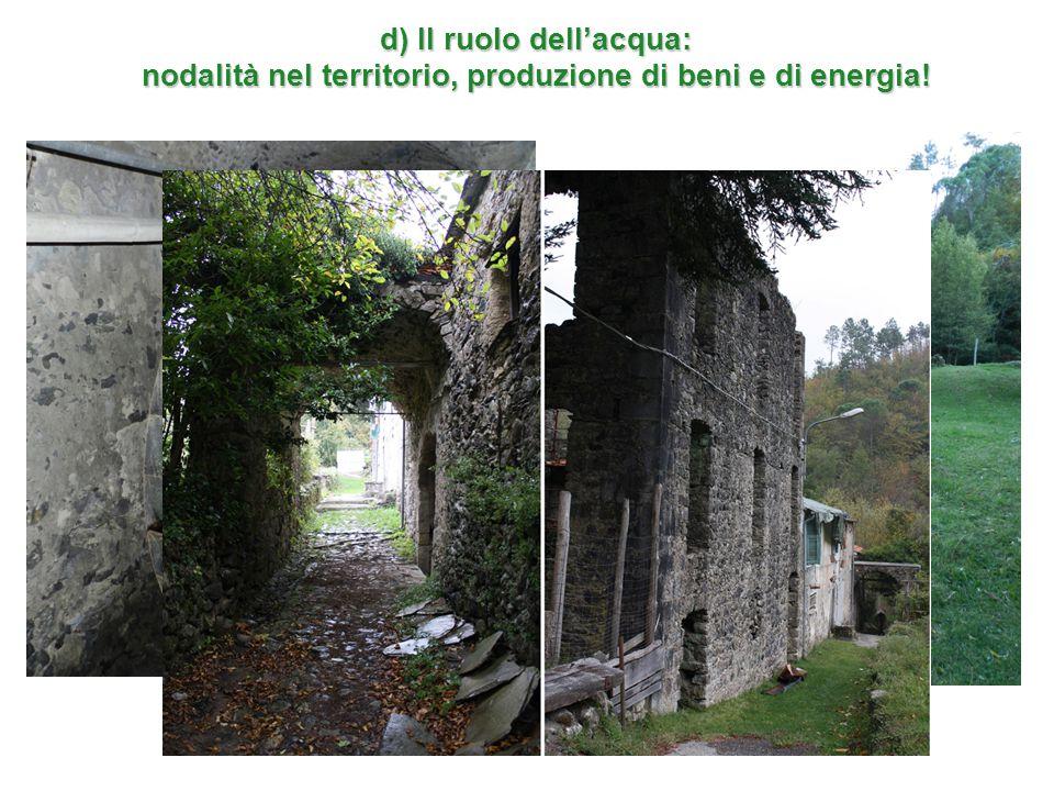 d) Il ruolo dell'acqua: nodalità nel territorio, produzione di beni e di energia!