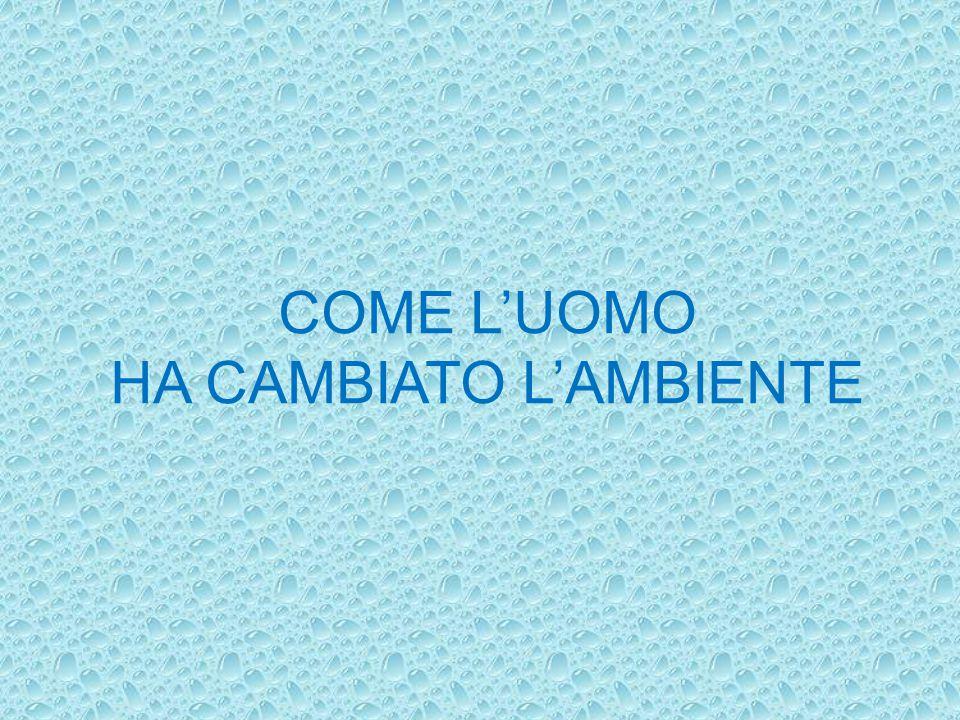 COME L'UOMO HA CAMBIATO L'AMBIENTE