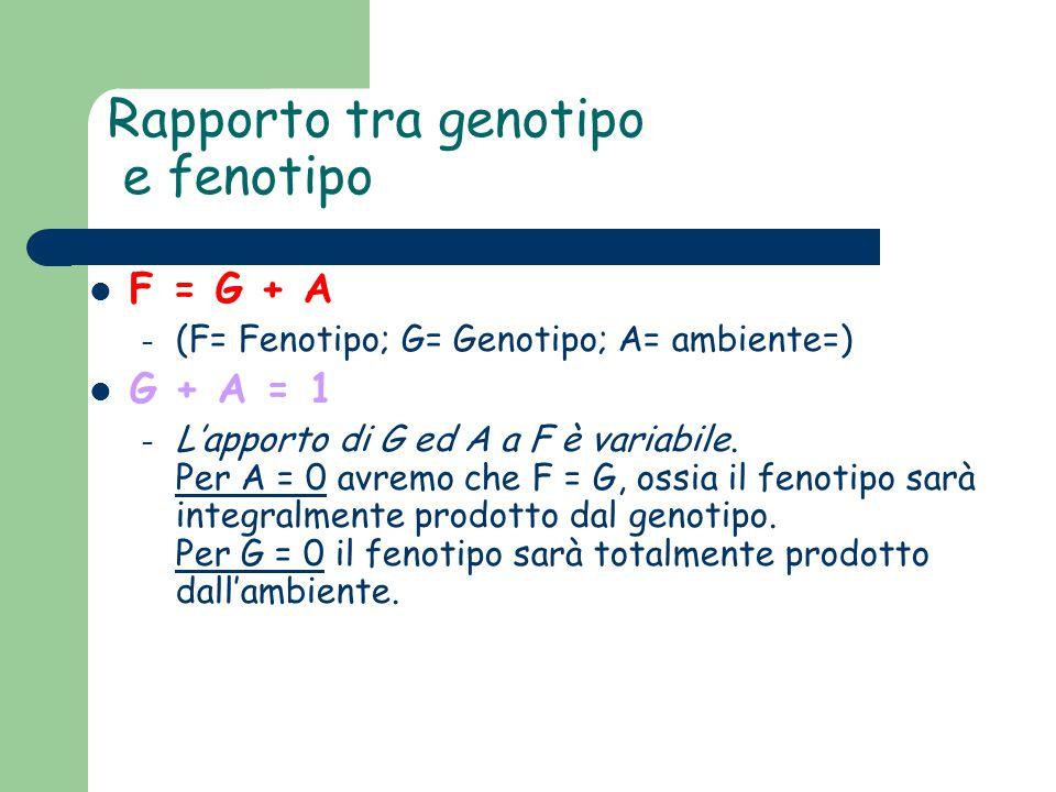 Rapporto tra genotipo e fenotipo F = G + A – (F= Fenotipo; G= Genotipo; A= ambiente=) G + A = 1 – L'apporto di G ed A a F è variabile. Per A = 0 avrem