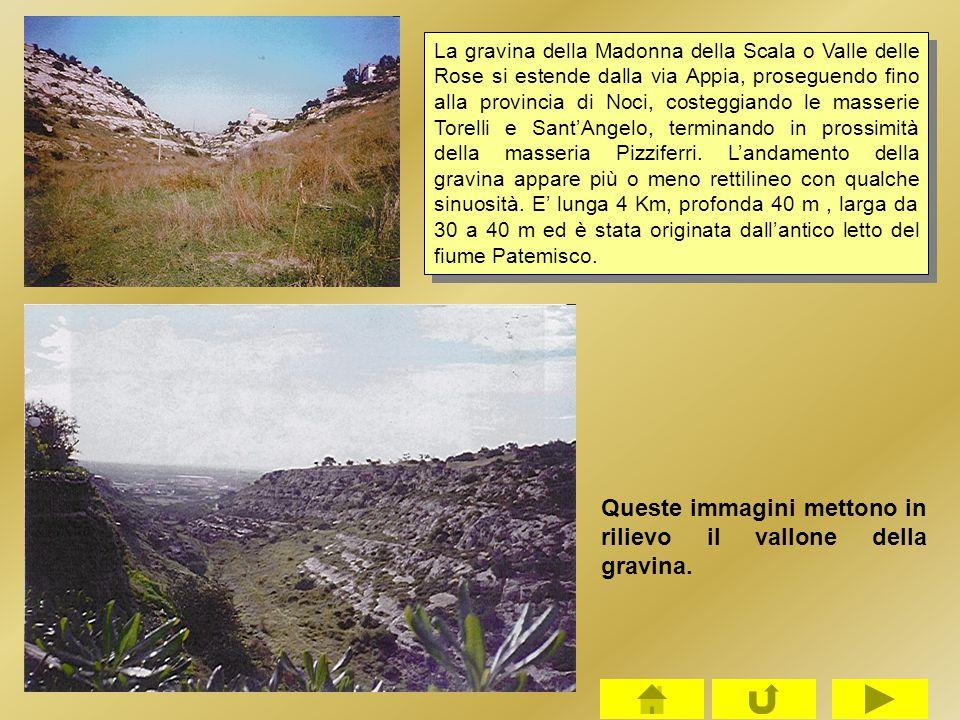 La gravina della Madonna della Scala o Valle delle Rose si estende dalla via Appia, proseguendo fino alla provincia di Noci, costeggiando le masserie