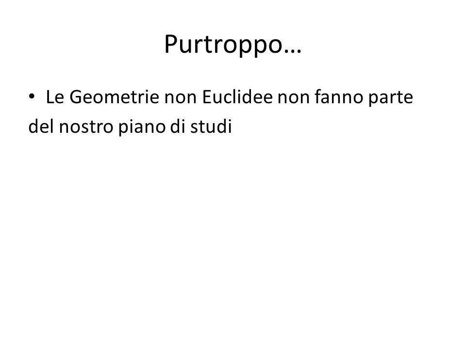 Purtroppo… Le Geometrie non Euclidee non fanno parte del nostro piano di studi