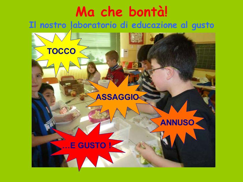 Ma che bontà! Il nostro laboratorio di educazione al gusto TOCCO ANNUSO ASSAGGIO …E GUSTO !