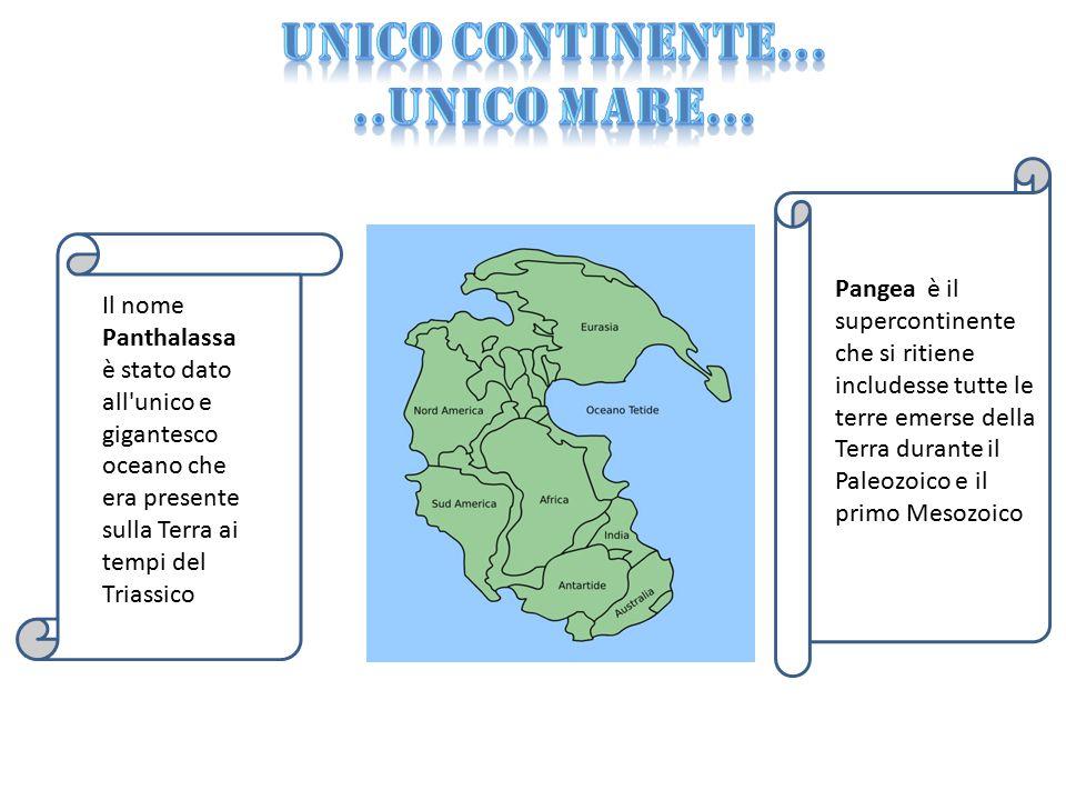 Pangea è il supercontinente che si ritiene includesse tutte le terre emerse della Terra durante il Paleozoico e il primo Mesozoico Il nome Panthalassa