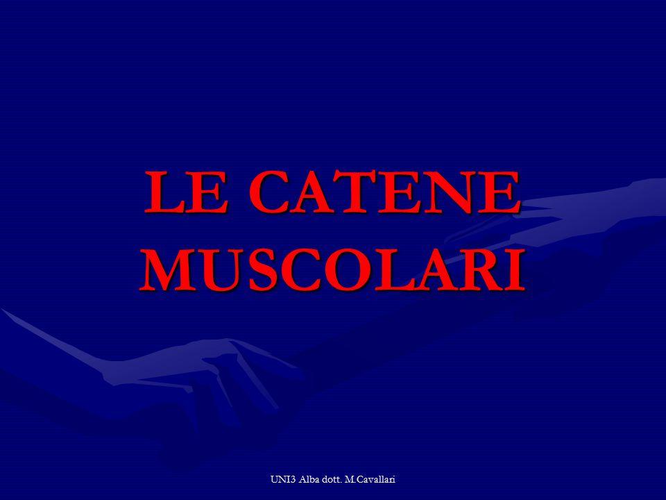 UNI3 Alba dott. M.Cavallari LE CATENE MUSCOLARI