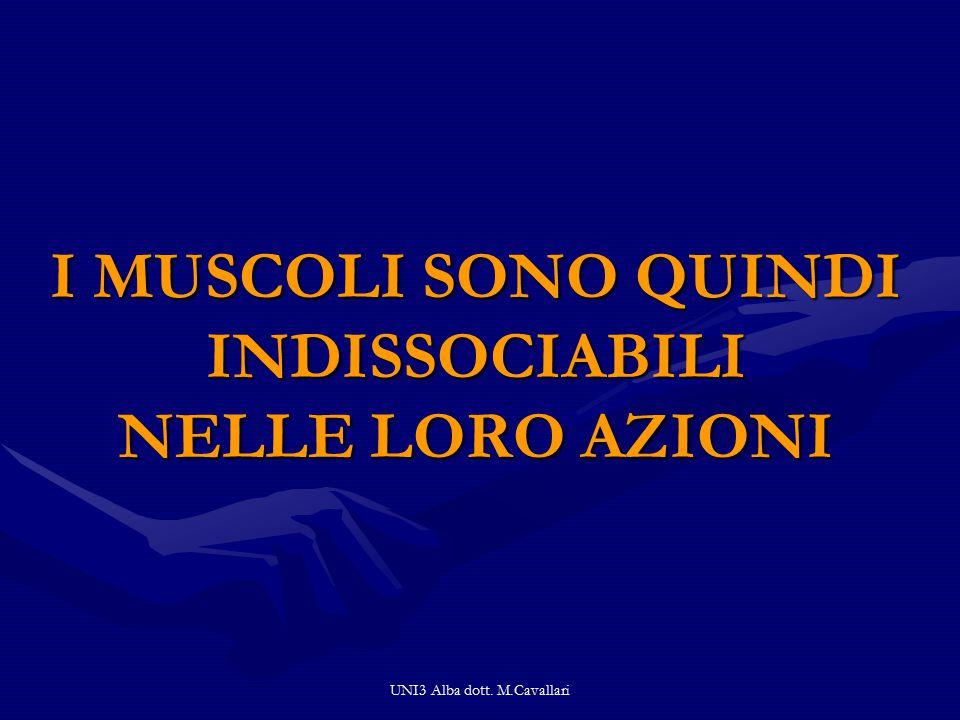 UNI3 Alba dott. M.Cavallari I MUSCOLI SONO QUINDI INDISSOCIABILI NELLE LORO AZIONI