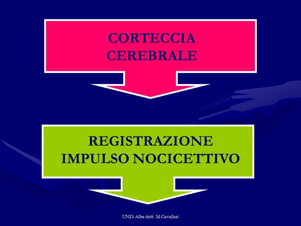UNI3 Alba dott. M.Cavallari CORTECCIA CEREBRALE REGISTRAZIONE IMPULSO NOCICETTIVO