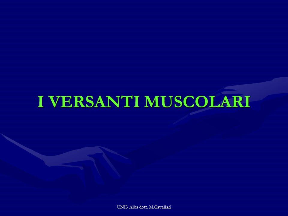 UNI3 Alba dott. M.Cavallari I VERSANTI MUSCOLARI