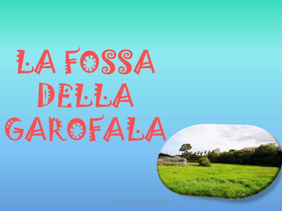 LA FOSSA DELLA GAROFALA 3^F Anno scolastico 2014/15