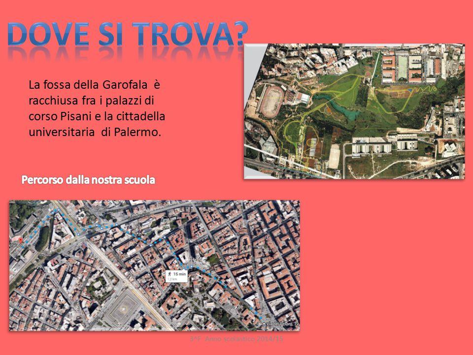 La fossa della Garofala è racchiusa fra i palazzi di corso Pisani e la cittadella universitaria di Palermo. 3^F Anno scolastico 2014/15