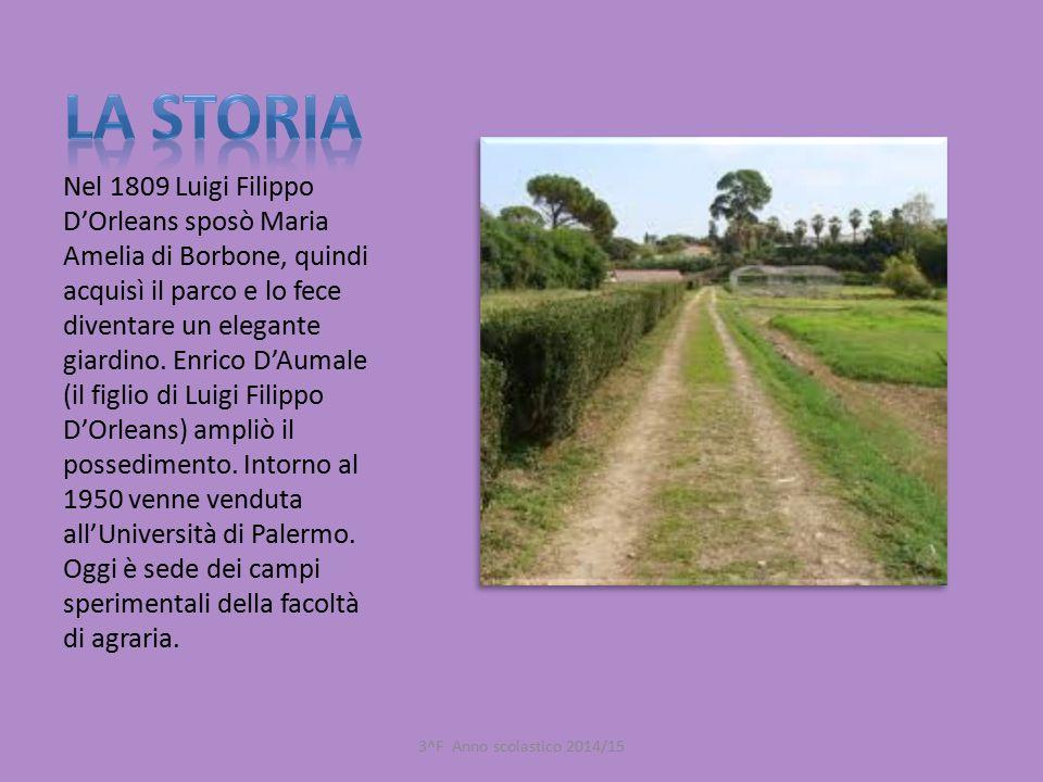 Nel 1809 Luigi Filippo D'Orleans sposò Maria Amelia di Borbone, quindi acquisì il parco e lo fece diventare un elegante giardino. Enrico D'Aumale (il