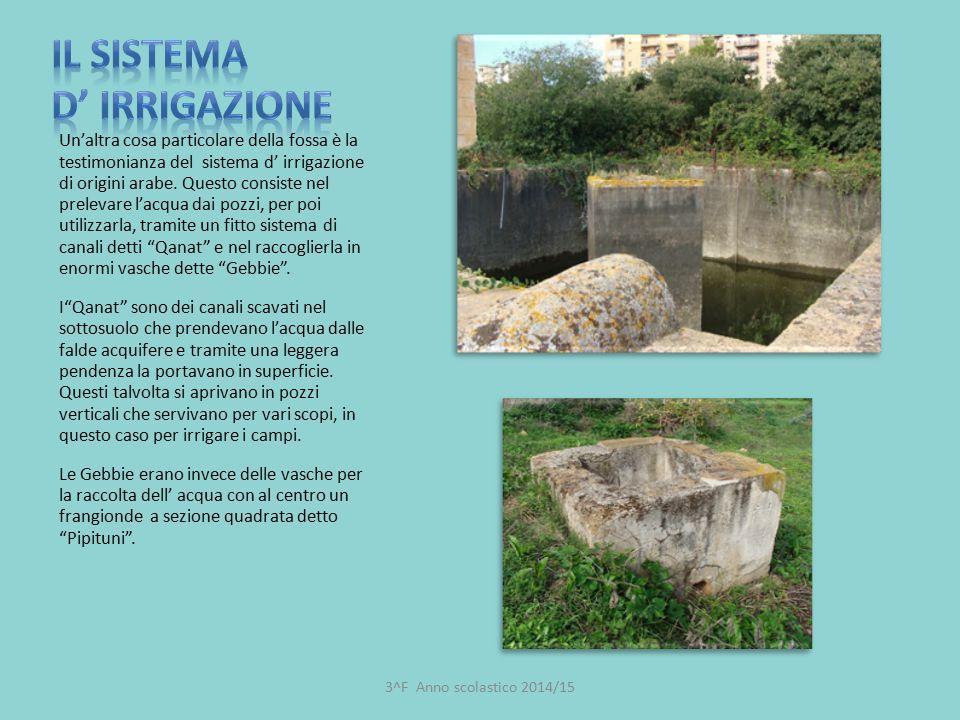 Un'altra cosa particolare della fossa è la testimonianza del sistema d' irrigazione di origini arabe. Questo consiste nel prelevare l'acqua dai pozzi,