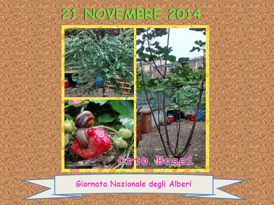 21 NOVEMBRE 2014 Giornata Nazionale degli Alberi 21 NOVEMBRE 2014