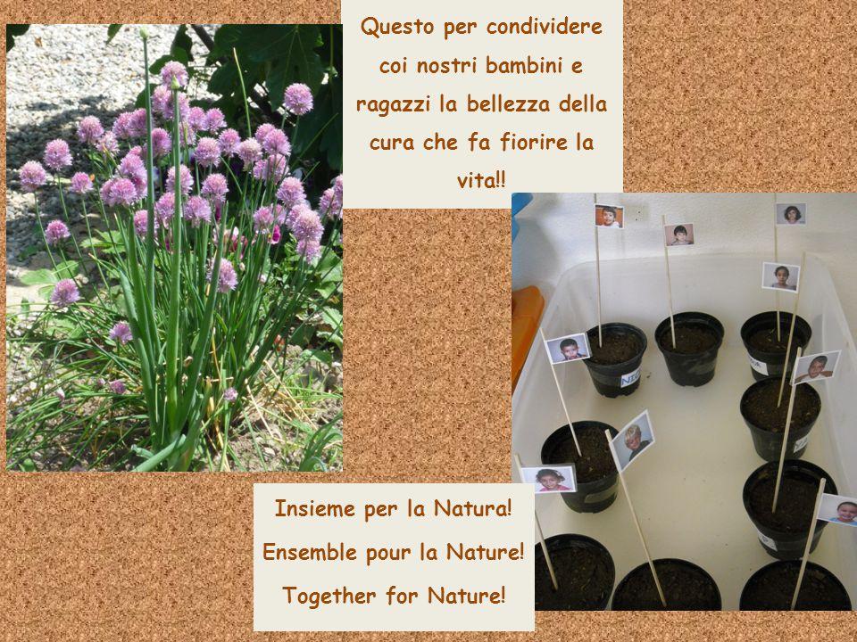Questo per condividere coi nostri bambini e ragazzi la bellezza della cura che fa fiorire la vita!! Insieme per la Natura! Ensemble pour la Nature! To