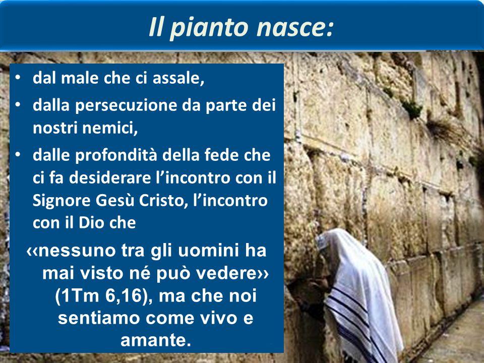 Coloro che piangono perché peccatori pentiti nel N. T. Pietro piange amaramente dopo aver rinnegato tre volte Gesù (cfr. Mc 14,72). La peccatrice, con