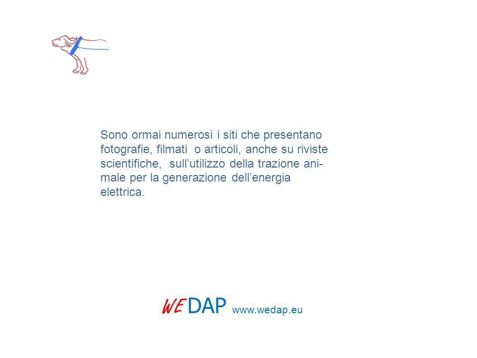 WE DAP www.wedap.eu Sono ormai numerosi i siti che presentano fotografie, filmati o articoli, anche su riviste scientifiche, sull'utilizzo della trazione ani- male per la generazione dell'energia elettrica.
