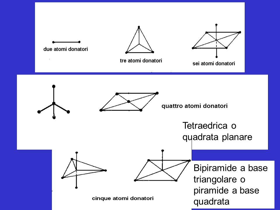 quattro atomi donatori Tetraedrica o quadrata planare Bipiramide a base triangolare o piramide a base quadrata