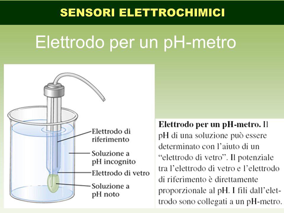 Elettrodo per un pH-metro SENSORI ELETTROCHIMICI