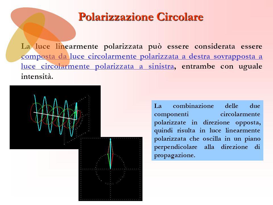Polarizzazione Circolare La luce linearmente polarizzata può essere considerata essere composta da luce circolarmente polarizzata a destra sovrapposta a luce circolarmente polarizzata a sinistra, entrambe con uguale intensità.