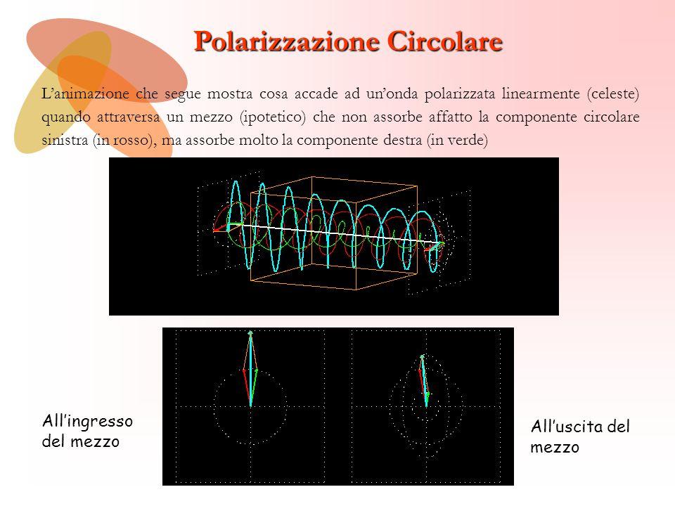Polarizzazione Circolare All'ingresso del mezzo All'uscita del mezzo L'animazione che segue mostra cosa accade ad un'onda polarizzata linearmente (cel
