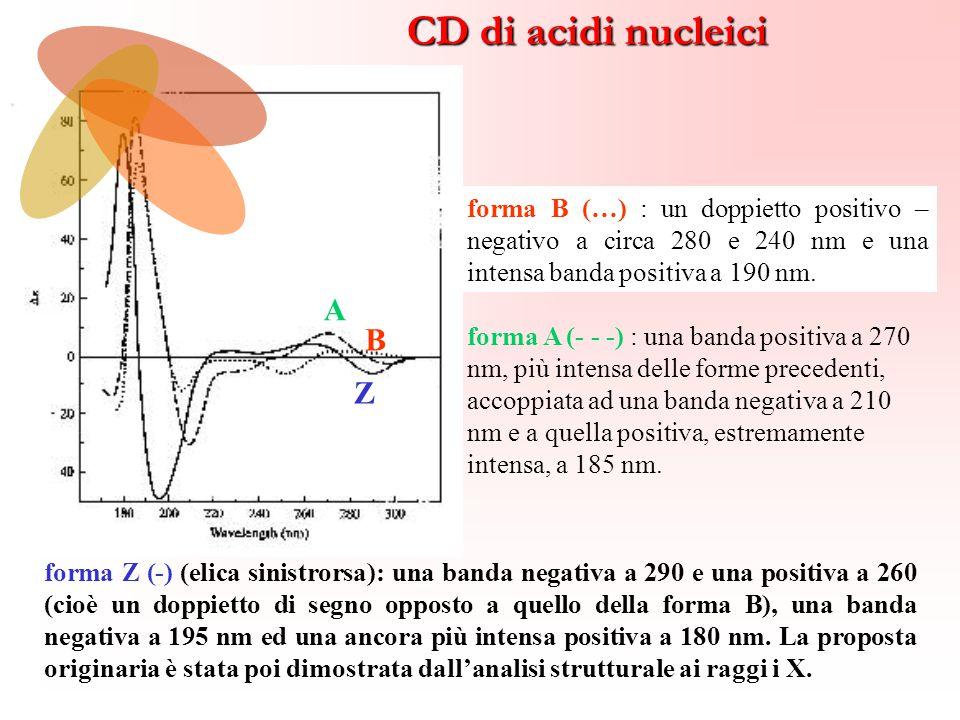 forma A (- - -) : una banda positiva a 270 nm, più intensa delle forme precedenti, accoppiata ad una banda negativa a 210 nm e a quella positiva, estr