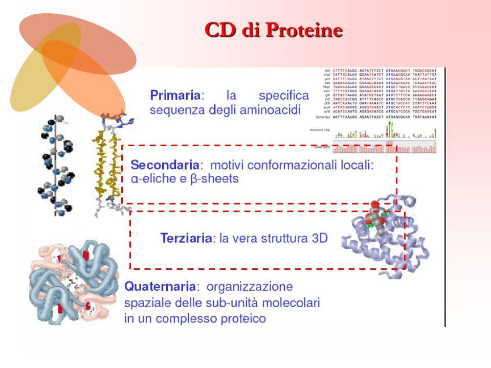 CD di Proteine