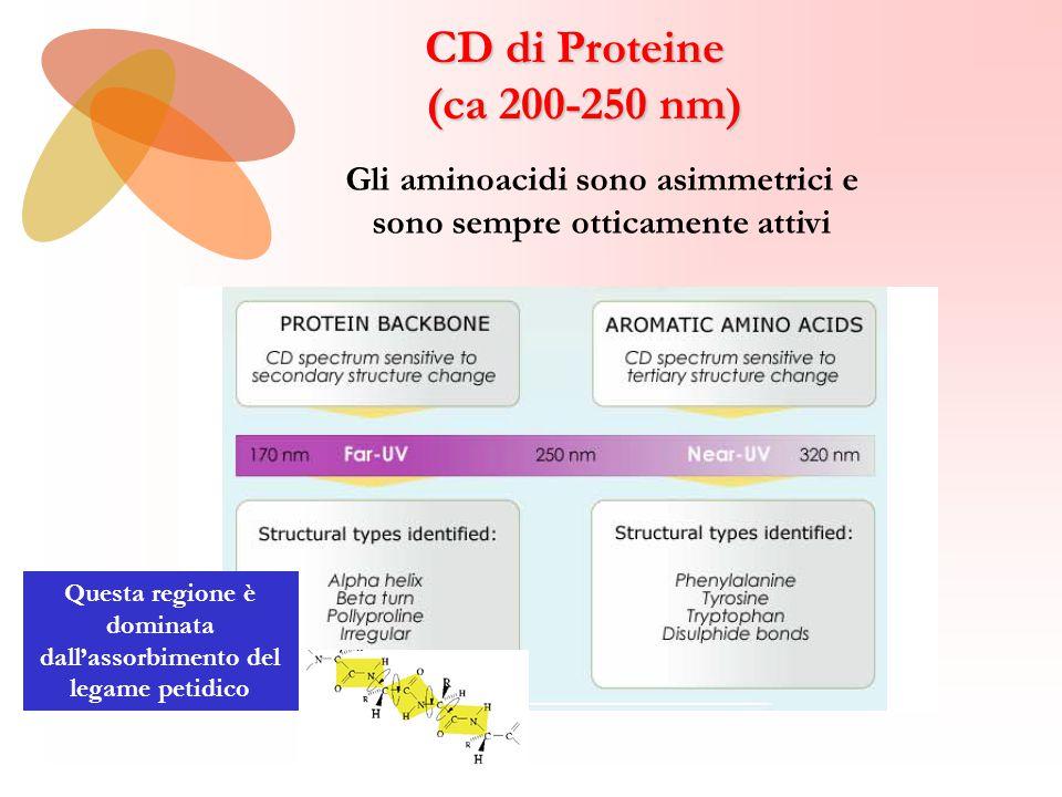 (ca 200-250 nm) Gli aminoacidi sono asimmetrici e sono sempre otticamente attivi Questa regione è dominata dall'assorbimento del legame petidico
