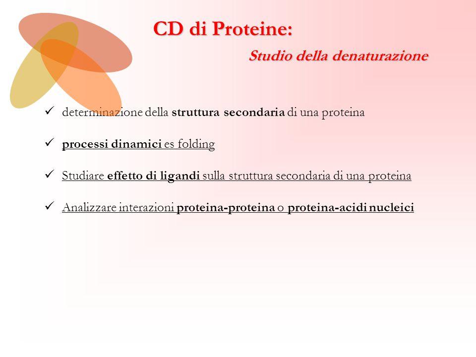 CD di Proteine: Studio della denaturazione Studio della denaturazione determinazione della struttura secondaria di una proteina processi dinamici es folding Studiare effetto di ligandi sulla struttura secondaria di una proteina Analizzare interazioni proteina-proteina o proteina-acidi nucleici