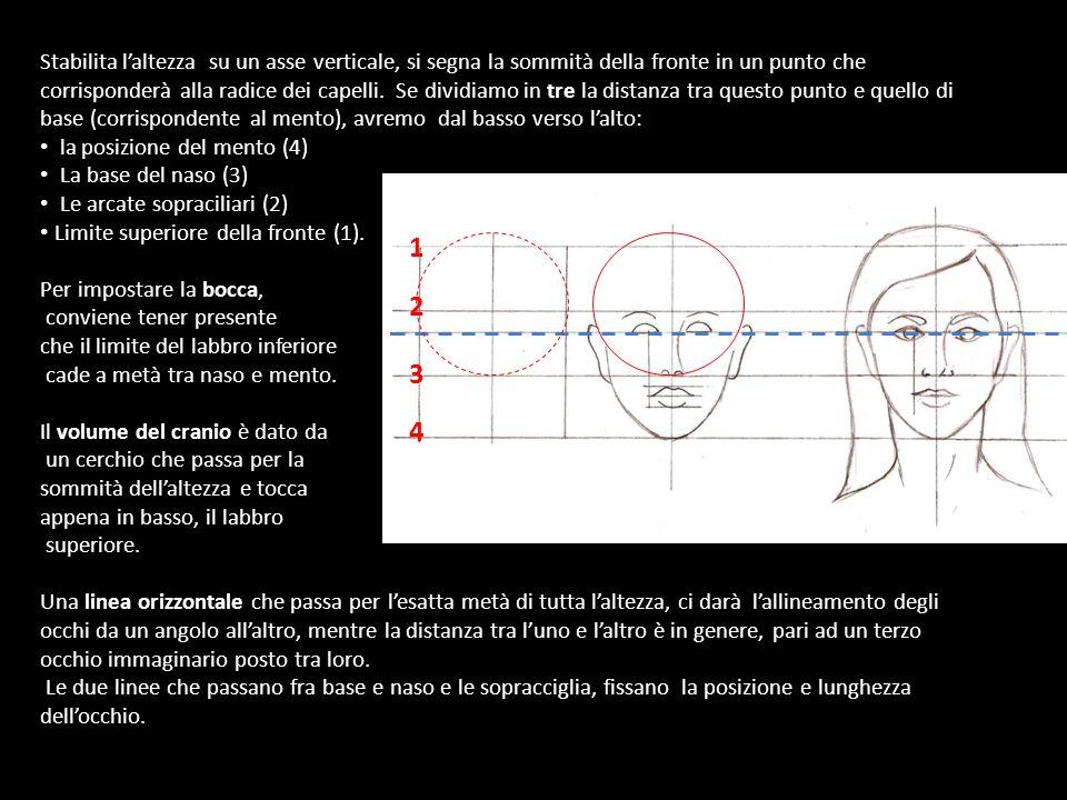 Adesso Possiamo Disegnare Un volto...