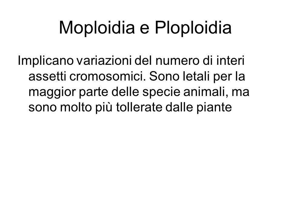 Moploidia e Ploploidia Implicano variazioni del numero di interi assetti cromosomici.