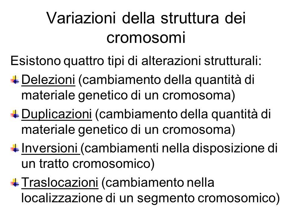 Esistono quattro tipi di alterazioni strutturali: Delezioni (cambiamento della quantità di materiale genetico di un cromosoma) Duplicazioni (cambiamento della quantità di materiale genetico di un cromosoma) Inversioni (cambiamenti nella disposizione di un tratto cromosomico) Traslocazioni (cambiamento nella localizzazione di un segmento cromosomico) Variazioni della struttura dei cromosomi