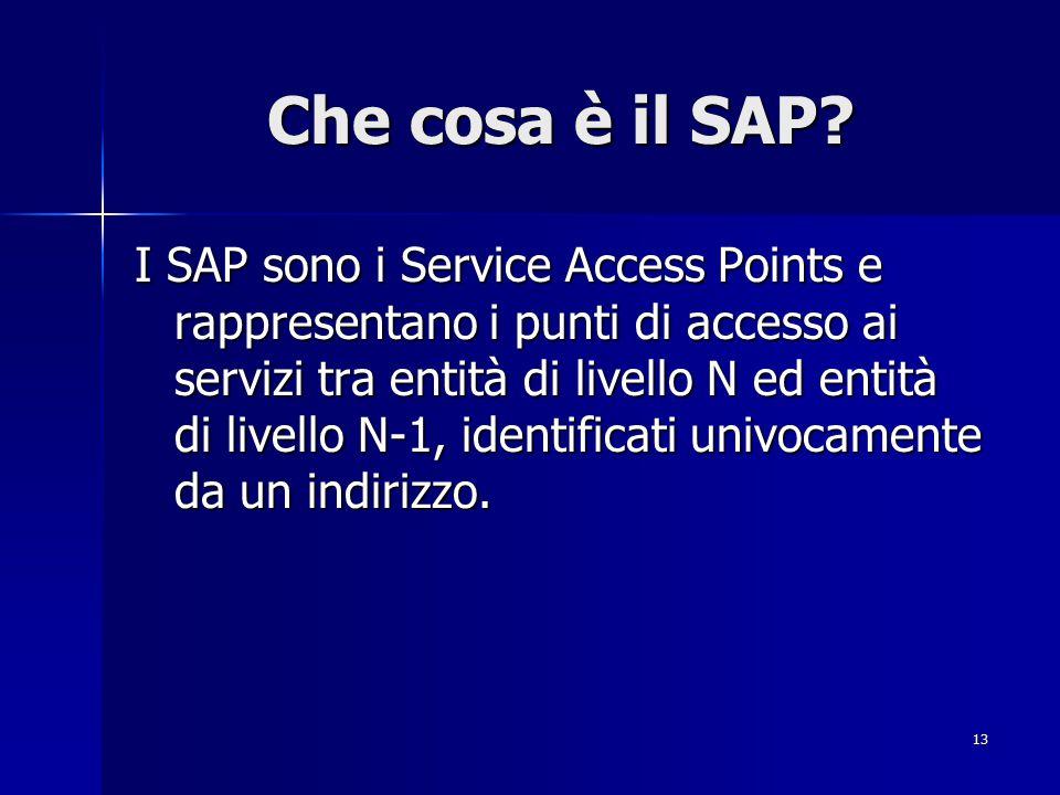 13 Che cosa è il SAP.