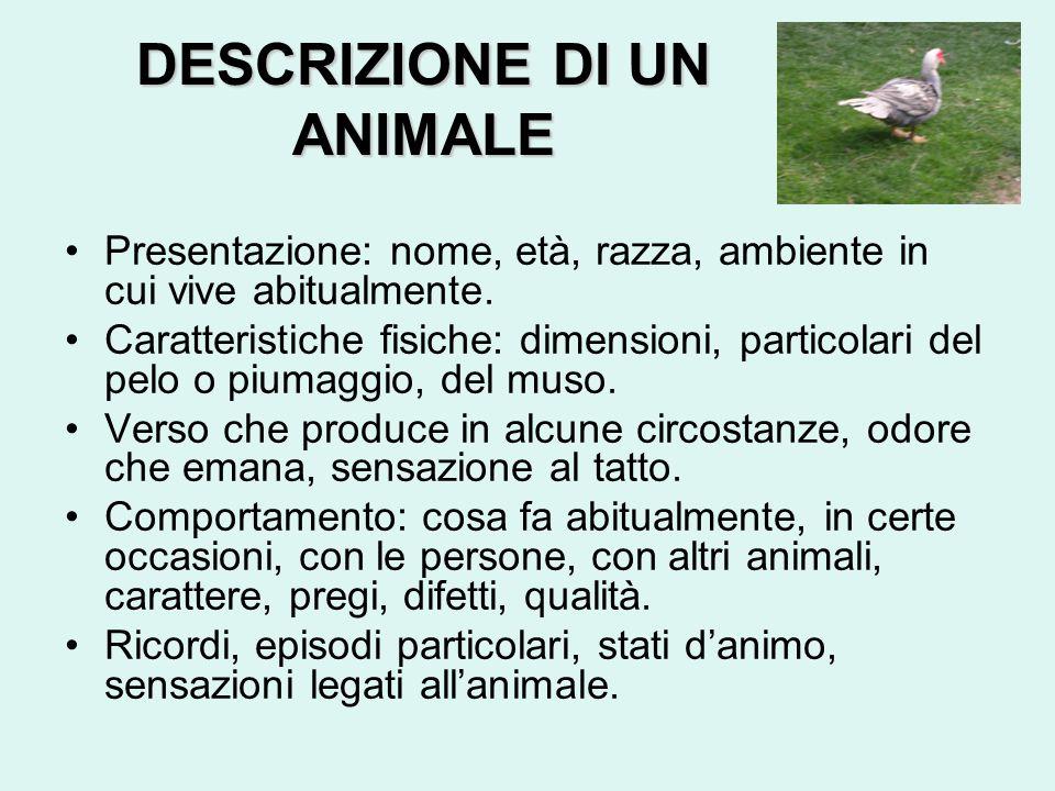 DESCRIZIONE DI UN ANIMALE Presentazione: nome, età, razza, ambiente in cui vive abitualmente.