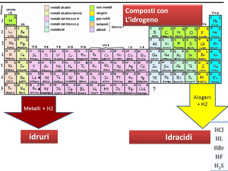 Composti con L'idrogeno Metalli + H2 Alogeni + H2 idruri Idracidi