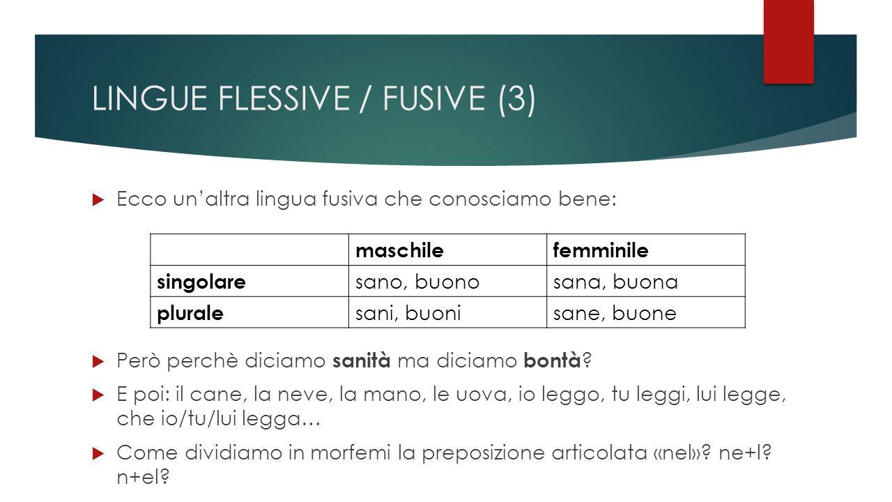 LINGUE FLESSIVE / FUSIVE (3)  Ecco un'altra lingua fusiva che conosciamo bene: maschilefemminile singolare sano, buonosana, buona plurale sani, buonisane, buone  Però perchè diciamo sanità ma diciamo bontà .