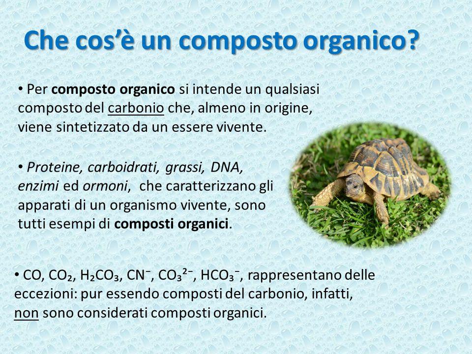 Che cos'è un composto organico.