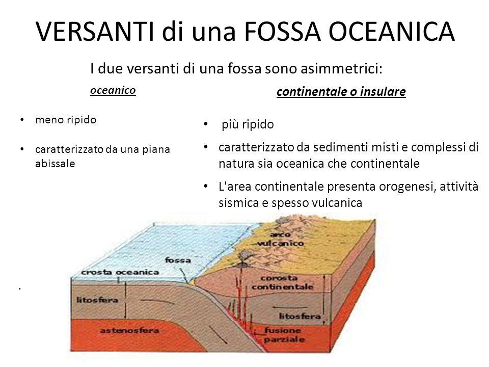VERSANTI di una FOSSA OCEANICA oceanico meno ripido caratterizzato da una piana abissale. continentale o insulare più ripido caratterizzato da sedimen
