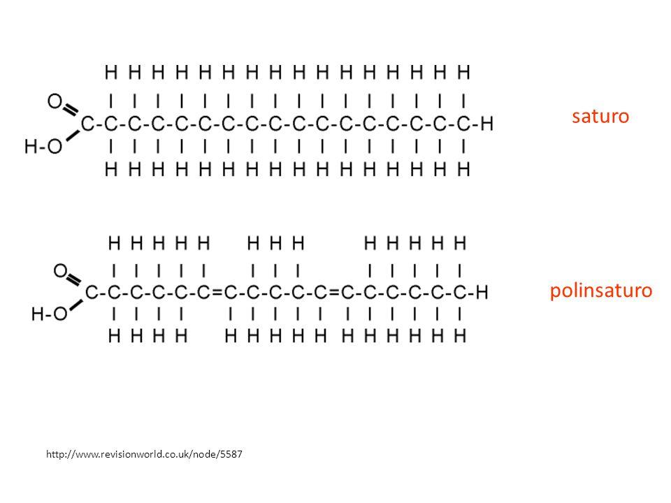 http://www.revisionworld.co.uk/node/5587 saturo polinsaturo