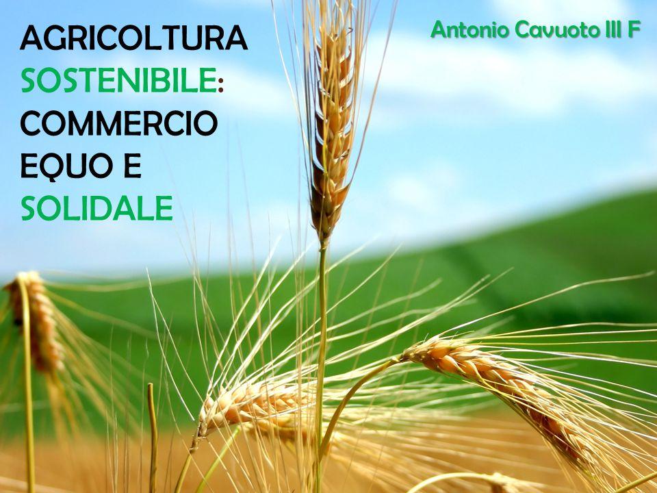 AGRICOLTURA SOSTENIBILE: COMMERCIO EQUO E SOLIDALE Antonio Cavuoto III F