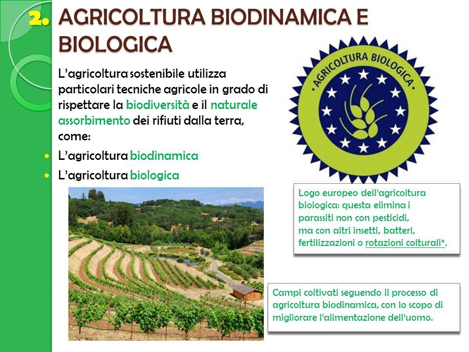 AGRICOLTURA BIODINAMICA E BIOLOGICA Campi coltivati seguendo il processo di agricoltura biodinamica, con lo scopo di migliorare l'alimentazione dell'u