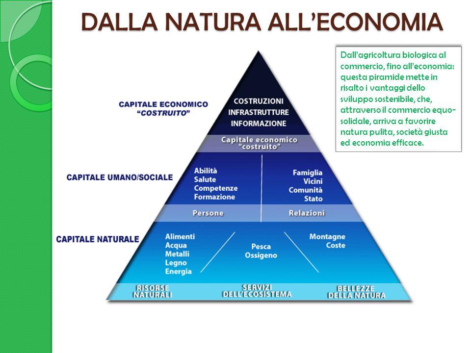 DALLA NATURA ALL'ECONOMIA Dall'agricoltura biologica al commercio, fino all'economia: questa piramide mette in risalto i vantaggi dello sviluppo sostenibile, che, attraverso il commercio equo- solidale, arriva a favorire natura pulita, società giusta ed economia efficace.