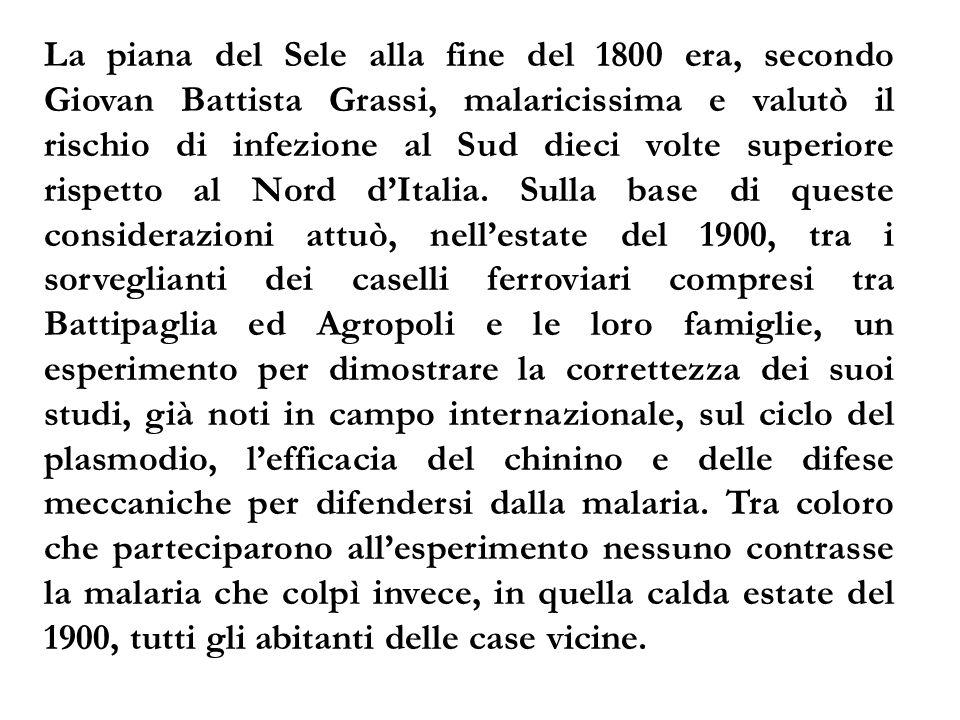 La piana del Sele alla fine del 1800 era, secondo Giovan Battista Grassi, malaricissima e valutò il rischio di infezione al Sud dieci volte superiore