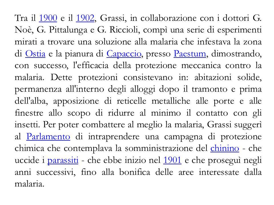 Tra il 1900 e il 1902, Grassi, in collaborazione con i dottori G. Noè, G. Pittalunga e G. Riccioli, compì una serie di esperimenti mirati a trovare un
