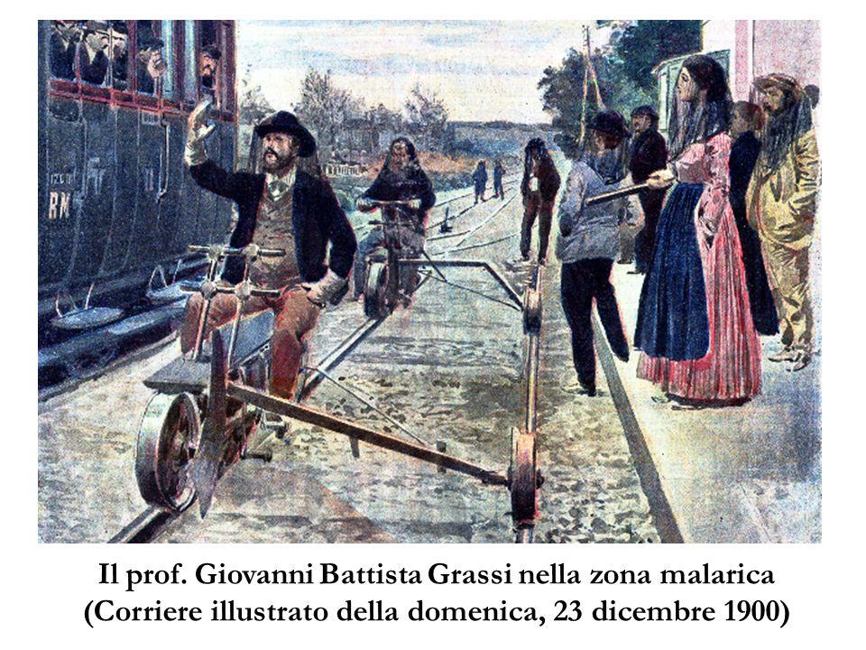 Il prof. Giovanni Battista Grassi nella zona malarica (Corriere illustrato della domenica, 23 dicembre 1900)
