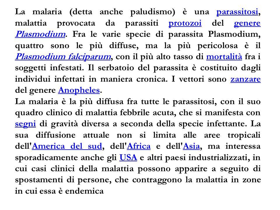 La malaria (detta anche paludismo) è una parassitosi, malattia provocata da parassiti protozoi del genere Plasmodium. Fra le varie specie di parassita