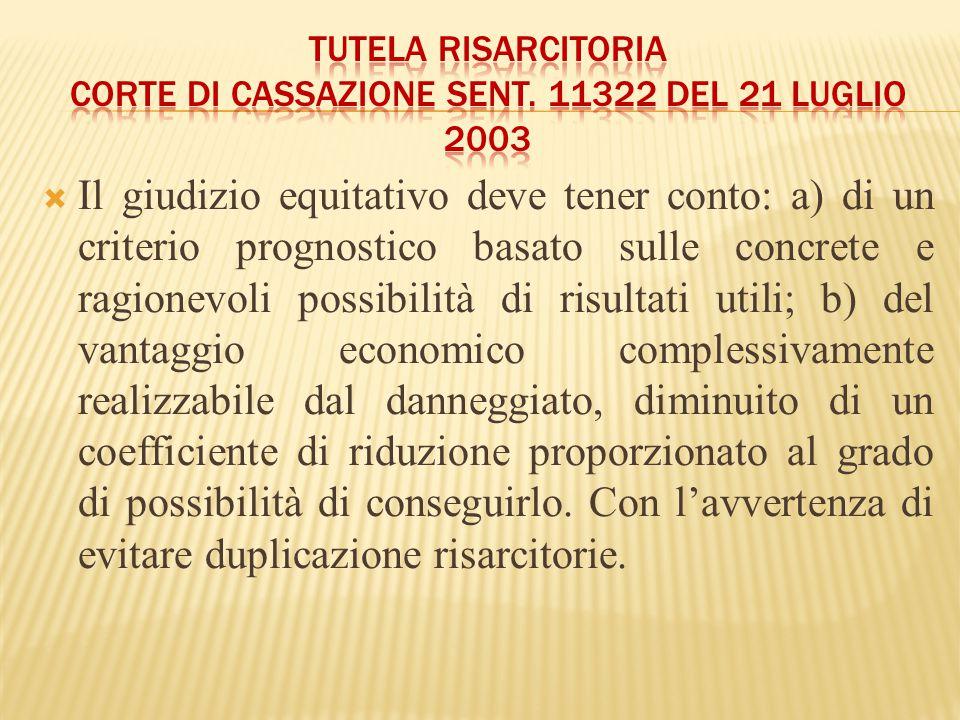  Il giudizio equitativo deve tener conto: a) di un criterio prognostico basato sulle concrete e ragionevoli possibilità di risultati utili; b) del va