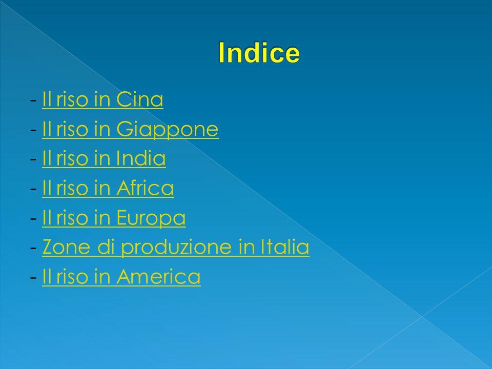 - Il riso in CinaIl riso in Cina - Il riso in GiapponeIl riso in Giappone - Il riso in IndiaIl riso in India - Il riso in AfricaIl riso in Africa - Il riso in EuropaIl riso in Europa - Zone di produzione in ItaliaZone di produzione in Italia - Il riso in AmericaIl riso in America