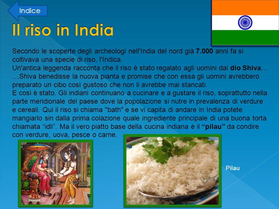 Secondo le scoperte degli archeologi nell India del nord già 7.000 anni fa si coltivava una specie di riso, l Indica.