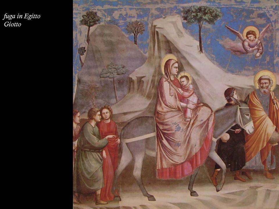 fuga in Egitto Giotto