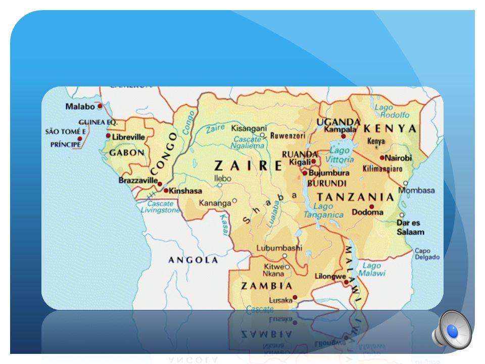 SONO CIRCA 250 000 VIVONO IN AFRICA TROPICO-EQUATORIALE :  CAMERUN  CONGO  GABON  UGANDA  RUANDA  REPUBBLICA DEMOCRATICA DEL CONGO
