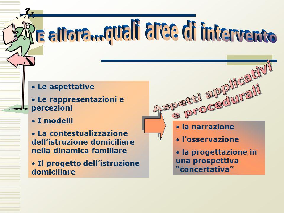 Le aspettative Le rappresentazioni e percezioni I modelli La contestualizzazione dell'istruzione domiciliare nella dinamica familiare Il progetto dell